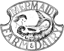 mermaid logo.png