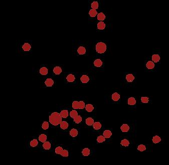 2021 map formation ONC Dvt.png