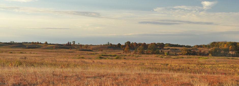 Nachusa Grasslands, Prairie