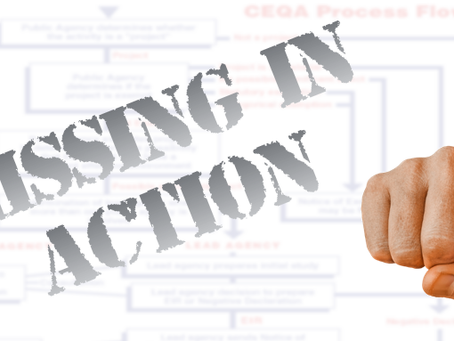 """ARE YOU """"MISSING IN ACTION""""  IN YOUR DECISIONS?"""
