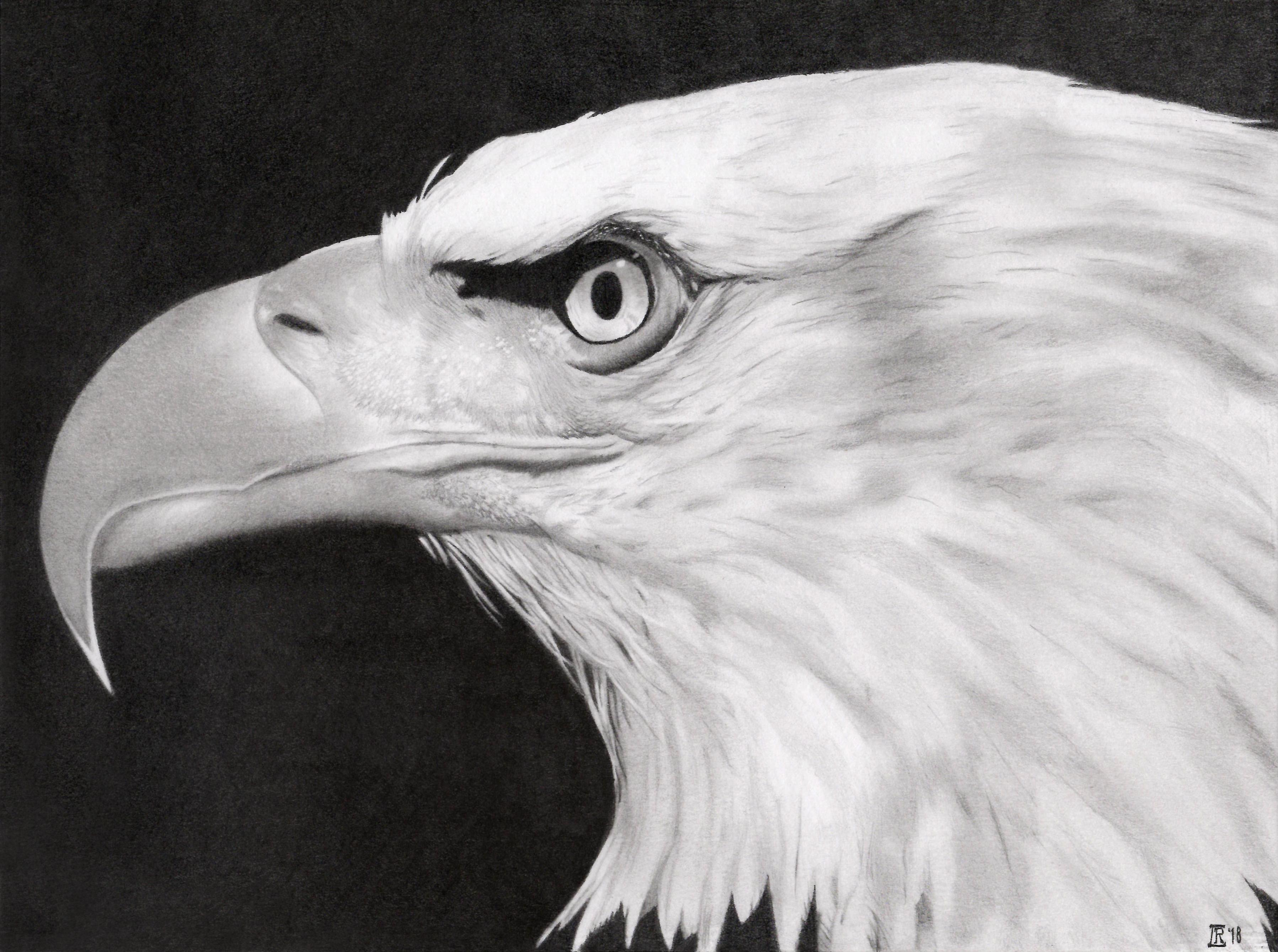 Eagle 2018
