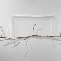 graft-the-light-artparis-artfair-Caroline-Tapernoux.jpg