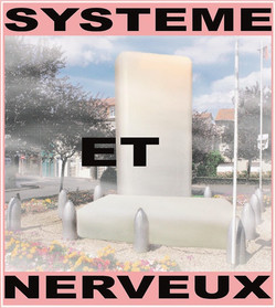 Systeme-et-nerveux