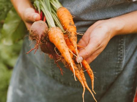 Matvanene våre er en viktig del av klimaløsningen
