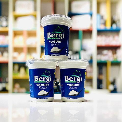 Yogurt bianco magro - 500 ml