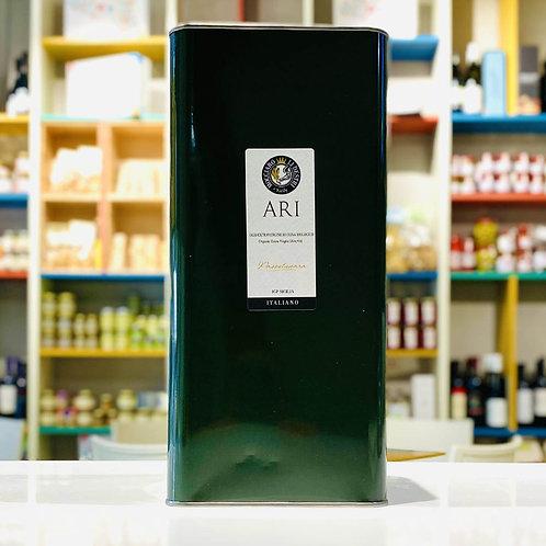 Passulunara   Olio Extra Vergine di oliva Bio - 5 L