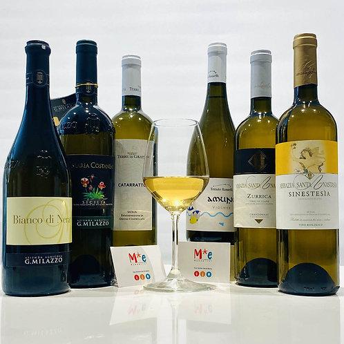 Selezione di vini bianchi siciliani - 6 bott