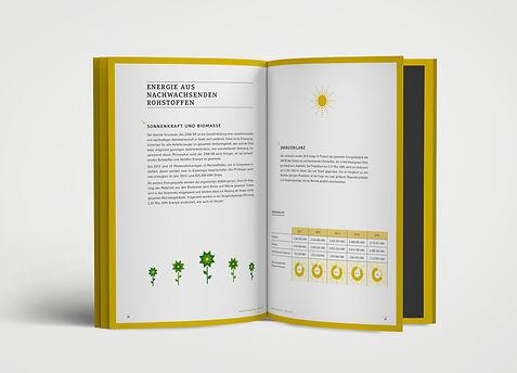 Wirtschaftsbericht Energie