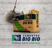 BG_BIOBIO.jpg