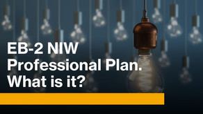 EB-2 NIW Professional Plan. What is it?