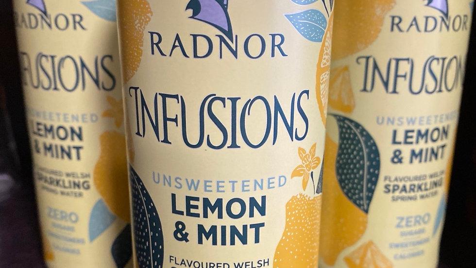 Radnor Infusions Lemon&Mint