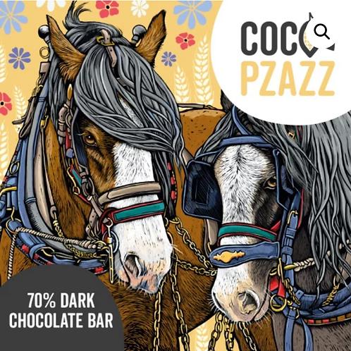 Coco Pzazz Chocolate Bars - Welsh