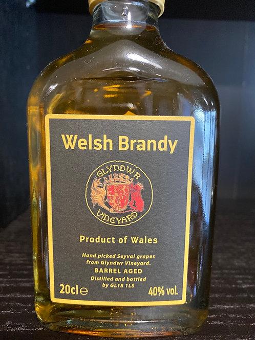 Welsh Apple Brandy by Glyndwr Vineyard
