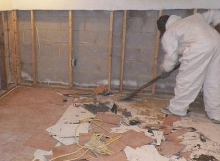 Mold Toxicity: It's Real