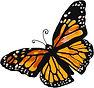 monarch drawing.jpg