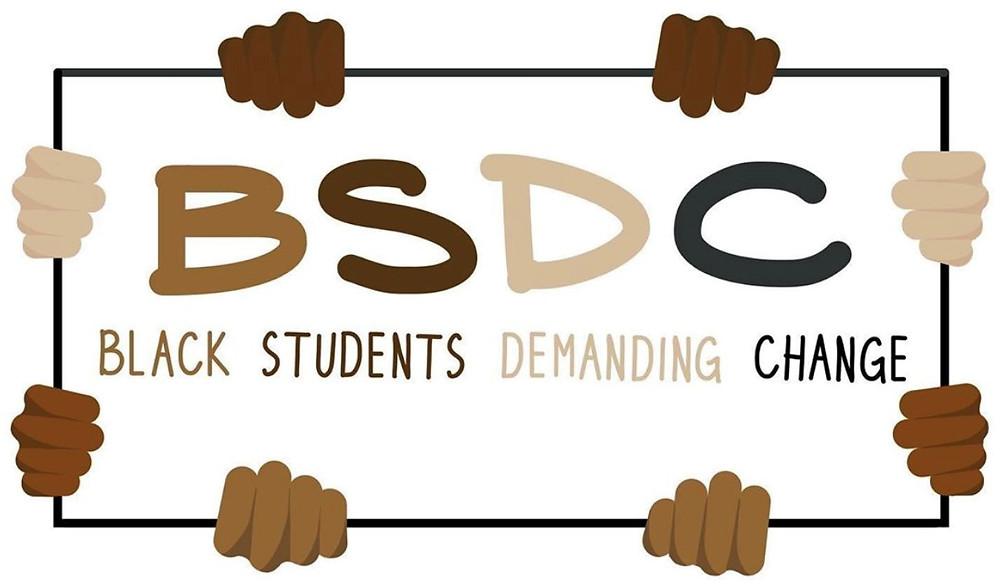 The BSDC logo (Photo Credit: Instagram @bsdcny)