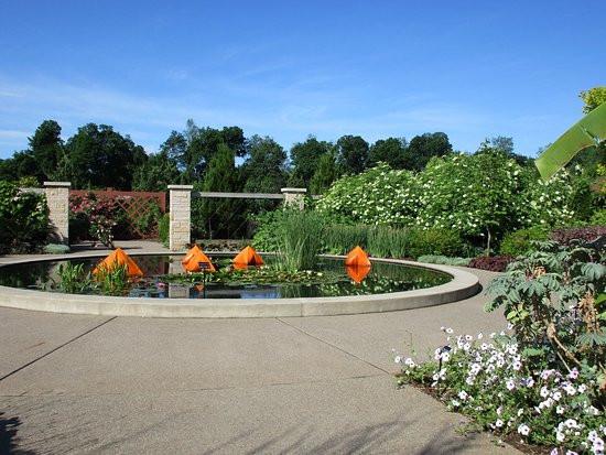 arboretum, nature, calm, beauty, pond