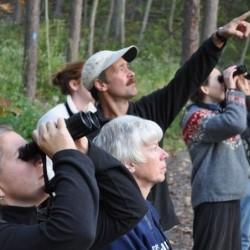 birdwatching, binoculars, Doug Wentzel, birdwatching