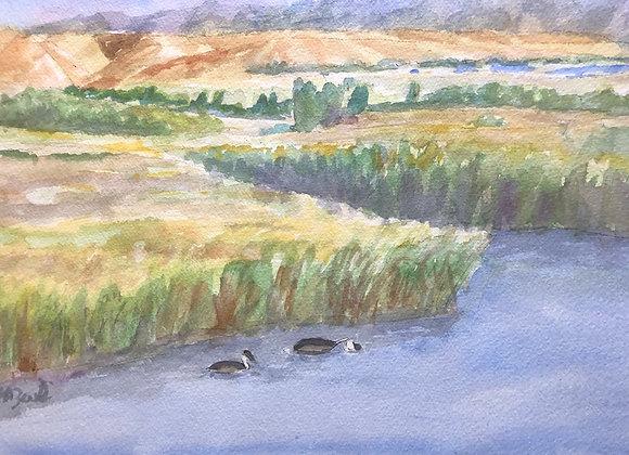 Watercolor marsh