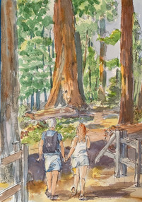 Hike in Sequoia.jpg