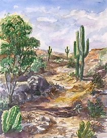 Watercolor desert.jpg