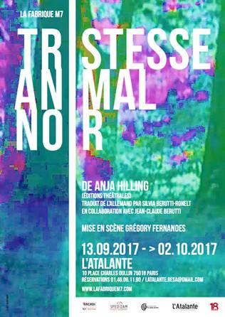 TRISTESSE ANIMAL NOIR d'Anja Hilling
