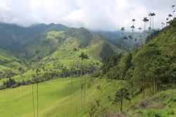 Armenia Colombia