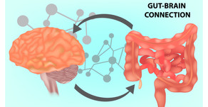 Can't focus? Hyperactive? Anxious? Depressed? Look to the gut, not the brain.