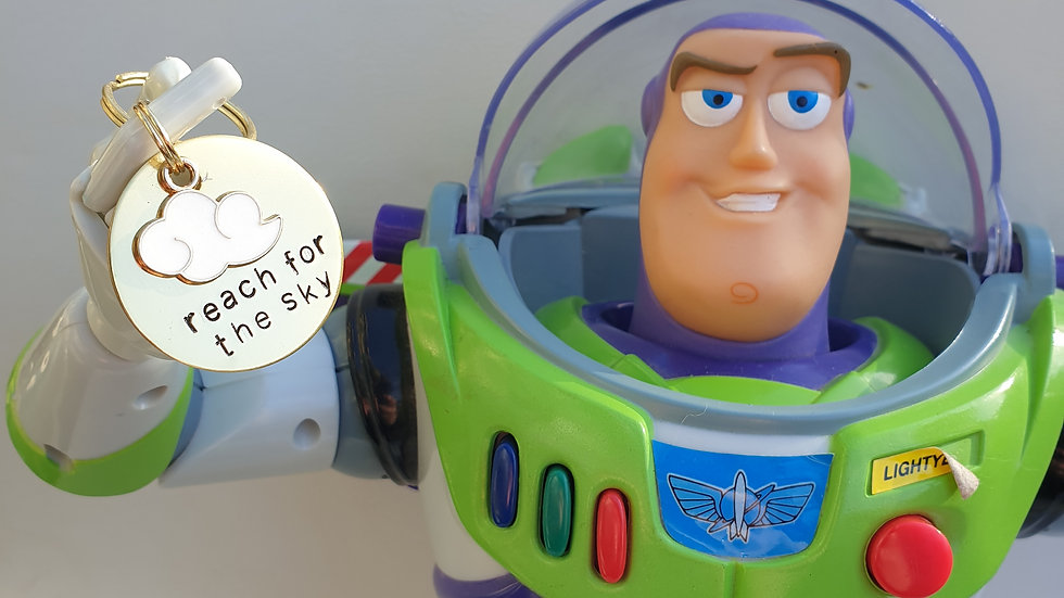 Toy story reach for the sky