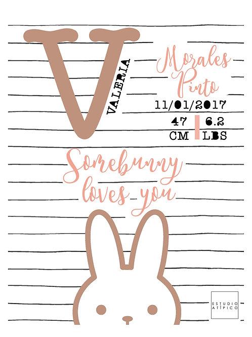 Nacimiento - Bunny