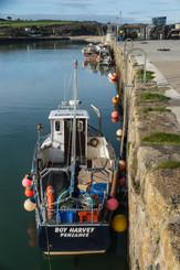 3. Hayle Dock