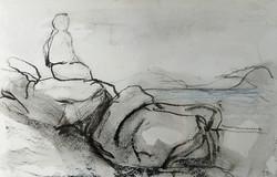 2017, 35 x 47 cm, Sue Rogers website, Ti