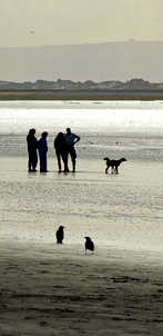 5. Double-headed Dog - Weston-super-Mare.