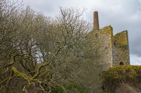18. Medlyn Moor Mine