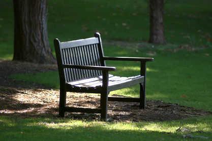 4. Pensive – Ventnor Botanical Gardens.