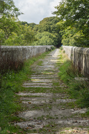 17. Treffry Viaduct.