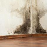 5 Common Hazards in Your Home