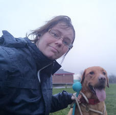 rainy morning walk with stanley