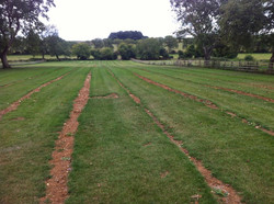 Back filled trenches