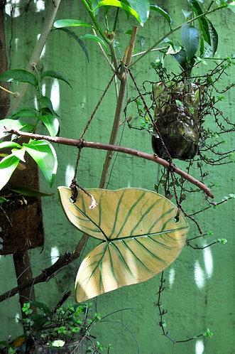 folha decorativa, objetos para decoração, objetos decorativos, folhas, quintal, jardim, varanda, sacada, quintal, cerâmica