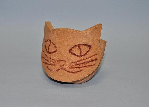 Vasinho com cara de gato apropriado para suculentas