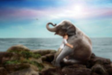 ElephantRyder-2.jpg