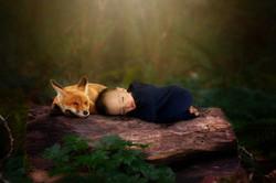 Sweet sleep fox and boy