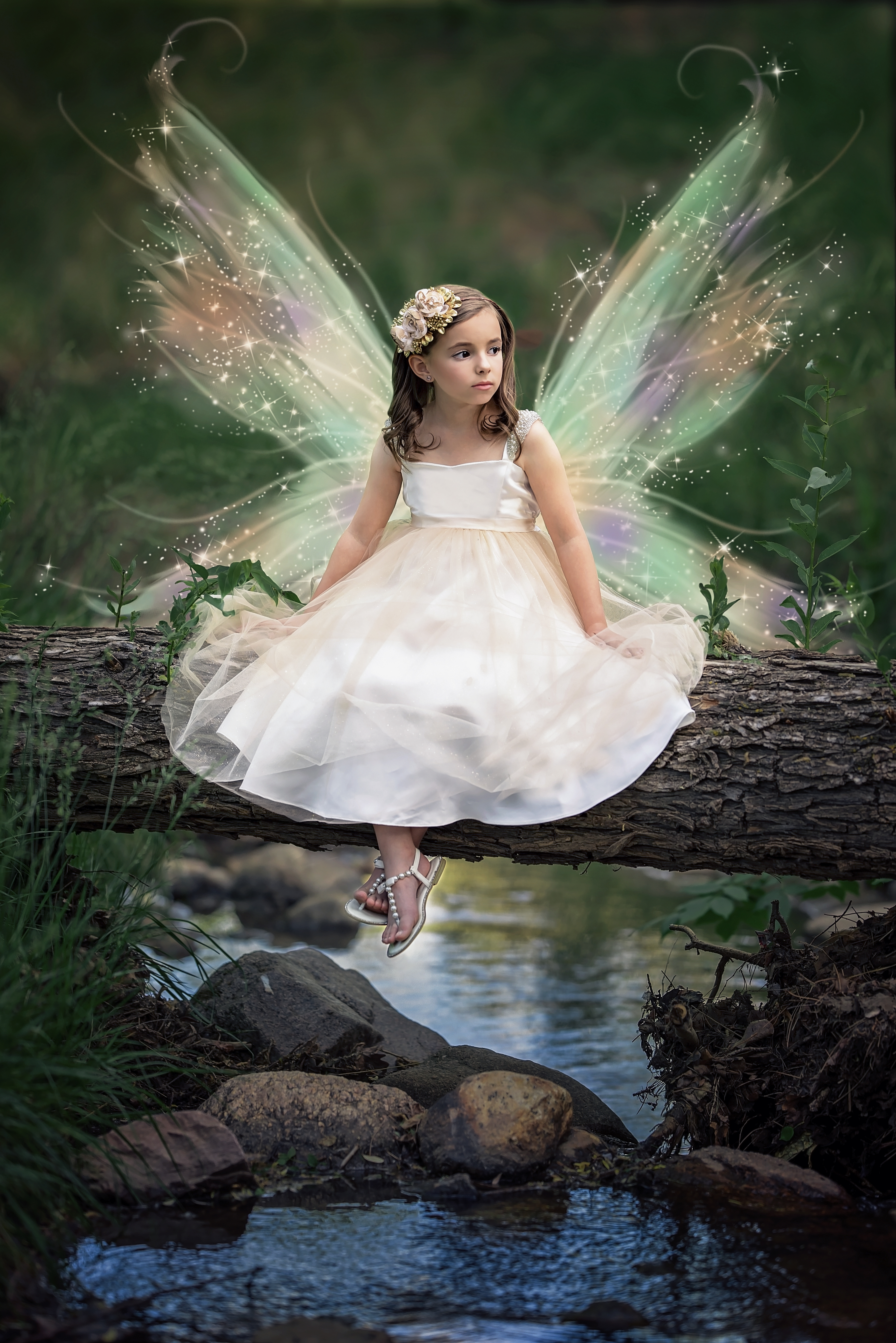 Fairy Wings Imagination