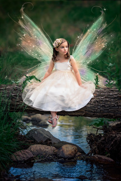 Fairy Wings Imagination