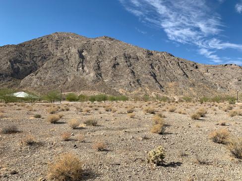 Desert at Lone Mountain