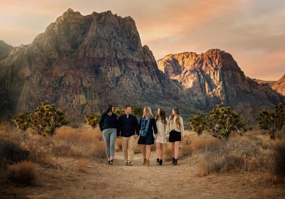Desert at Red Rock