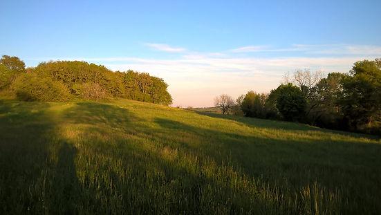 landschap rond Domaine Laubaro, Le Var