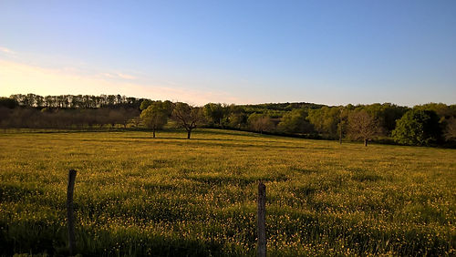Landschap rond Domaine Laubaro