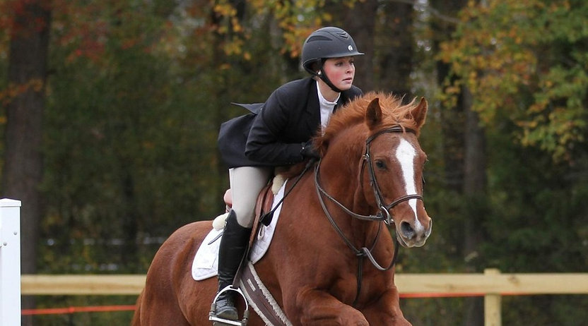 Hazelwild Farm UMW Riding Program